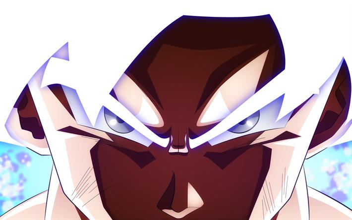 Descargar Fondos De Pantalla Ultra Instinto De Goku 4k Dragon Ball El Arte La Dbs Goku Dragon Ball Super Libre Imágenes Fondos De Descarga Gratuita