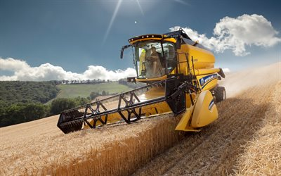 4k, New Holland TC5 90 Hillside, combine harvester, 2020 combines, wheat harvest, harvesting concepts, New Holland