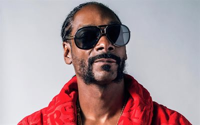 Snoop Dogg, American rapper, portrait, rap, Calvin Cordozar Broadus