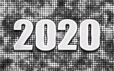 Silver 2020 background, Happy New Year 2020, Silver abstract background, 2020 concepts, 2020 New Year, Silver 2020 metal art