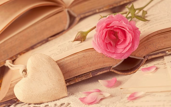 heart, 5K, pink rose, books