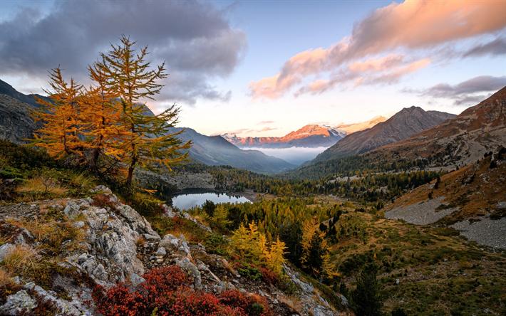 foto de Télécharger fonds d'écran paysage d'automne jaune des