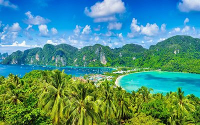 Phi Phi Islands, palm trees, tropical islands, summer travel, bay, yachts, Thailand