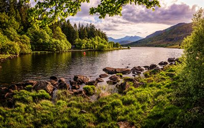 Snowdonia, 4k, summer, beautiful nature, river, forest, Wales, UK, Great Britain