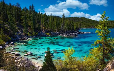 Lake Tahoe, blue bay, forest, morning, green trees, Ancient lake, Sierra Nevada, USA