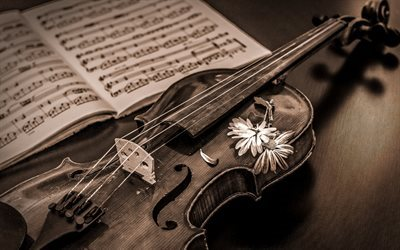 old violin, musical instrument, music, wooden violin