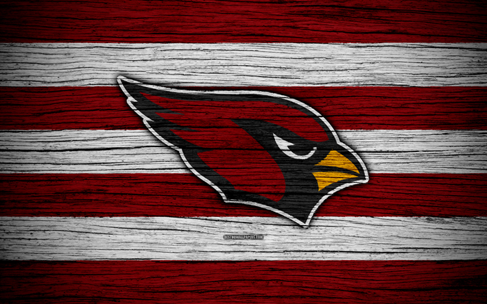 Arizona Cardinals, NFL