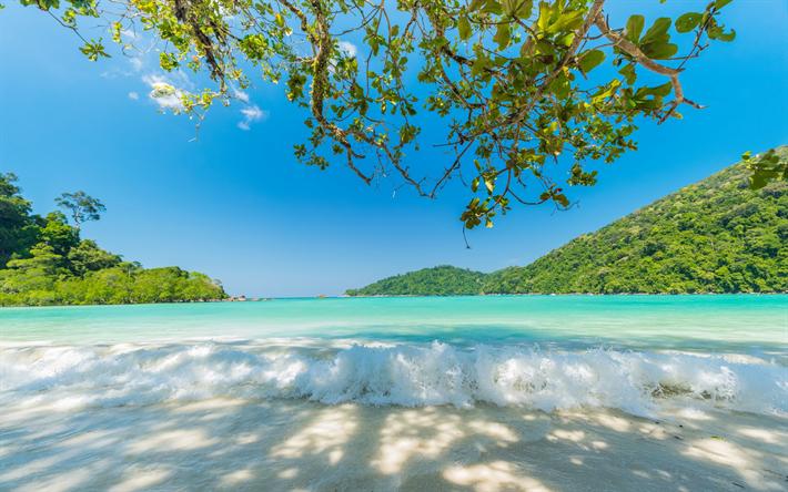 Scarica Sfondi Tropicale Isola Oceano Estivo Viaggiare Palme
