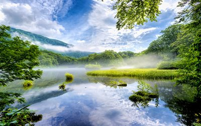 Japanese nature, 4k, lake, morning landscapes, fog, Nara, Japan, Asia, beautiful nature, forest, mountains