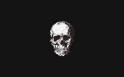 white skull, 4k, minimal, creative, artwork, scary skull, background with skull, black backgrounds, skull