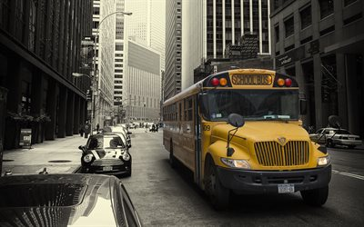 New York, school bus, metropolis, streets, USA, American school bus