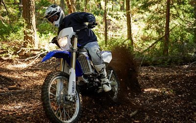 forest, wr450f, motocross, 2016, yamaha