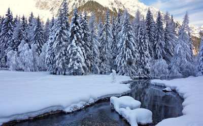 snow, trees, winter, river, nature