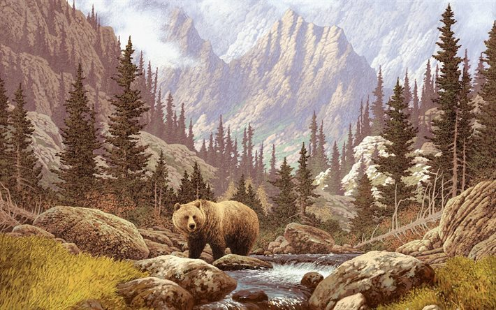 bear, picture, nature, mountains