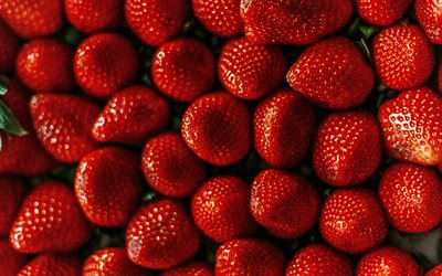 strawberries, top view, berries, background with strawberries, red berries background