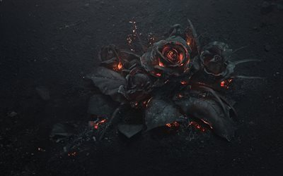 roses, ashes, fire, creative