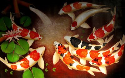 brocade carp, koi fish, colored carp, japan, koi