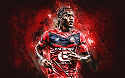 Renato Sanches, Lille OSC, Portuguese footballer, portrait, red stone background, Lille, football