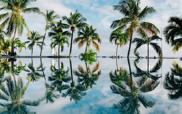 Scarica Sfondi Tropici 4k Estate Mare Palme Il Resort Per