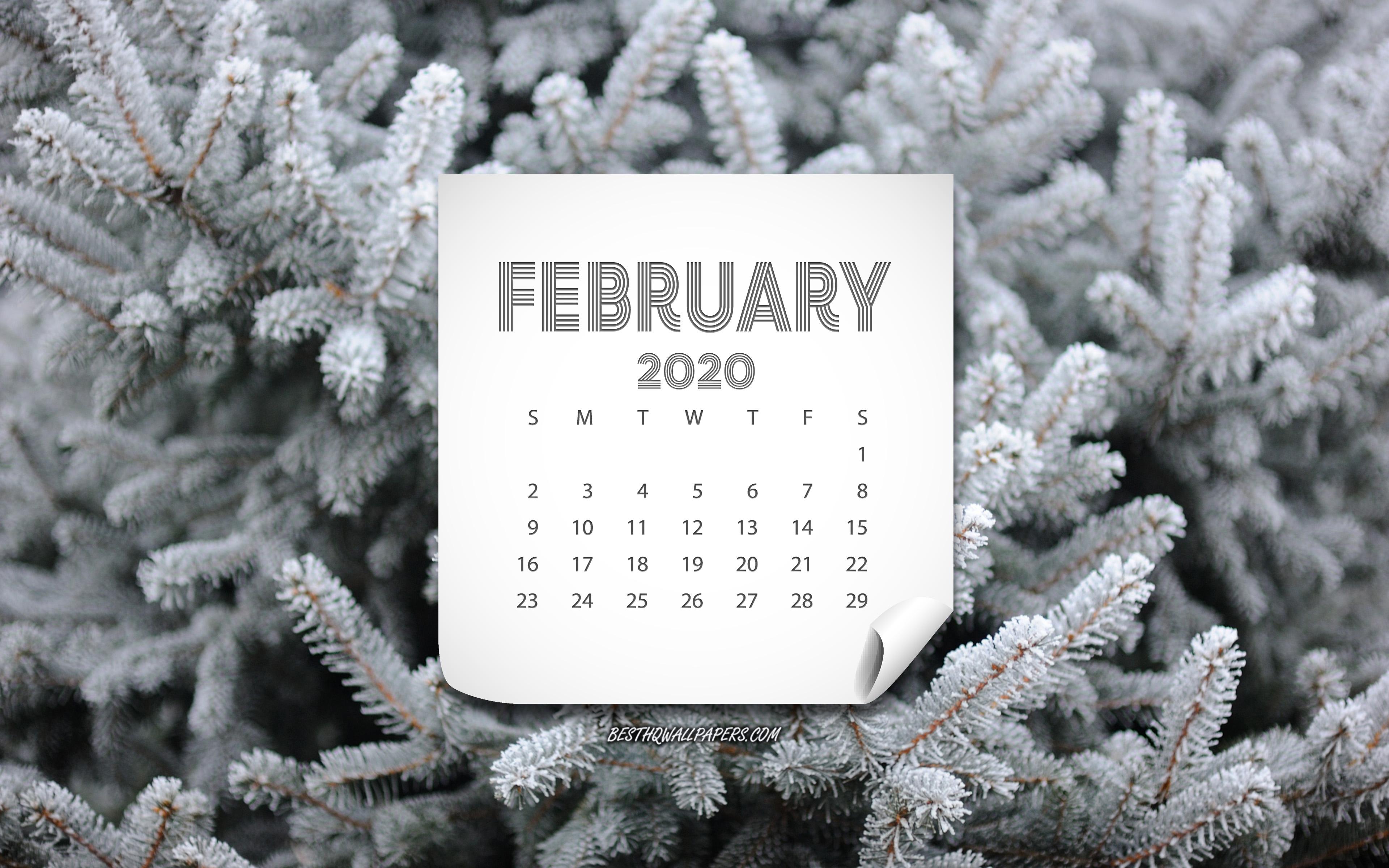 Картинки календаря февраль