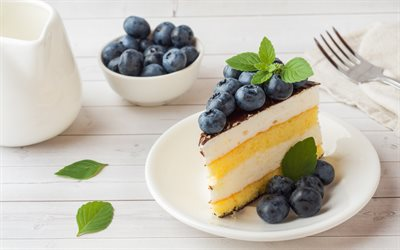 blueberry cake, biscuit cake, sweets, cakes, dessert, cake with berries, blueberries