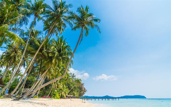 Palms Beach Tropical Island
