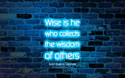 Wise is he who collects the wisdom of others, 4k, blue brick wall, Juan Guerra Caceras Quotes, neon text, inspiration, Juan Guerra Caceras, quotes about wisdom
