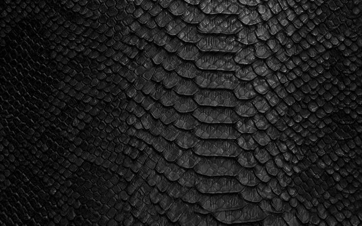 Download wallpapers black snake leather texture, snake skin background, cobra texture, black ...