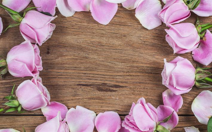 Fondos De Pantalla Rosa Rosa Flores Fondo De Madera: Descargar Fondos De Pantalla Marco De Rosas De Color Rosa