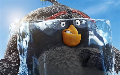 bombe, die angry birds-film 2, 2019-film, 3d-animation, angry birds 2, grauer vogel