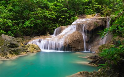 waterfall, rainforest, Thailand, jungle, blue lake, koi carps, goldfish, beautiful waterfalls