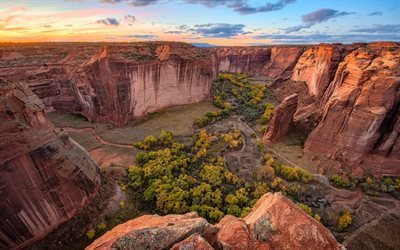 skogen, usa, canyon, amerika, öknen, sunset