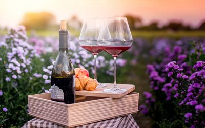 glasses with red wine, vineyard, picnic, croissants, red wine, grapes