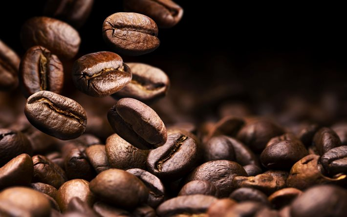 Coffee beans, background with coffee, falling coffee grains, coffee concepts, coffee background