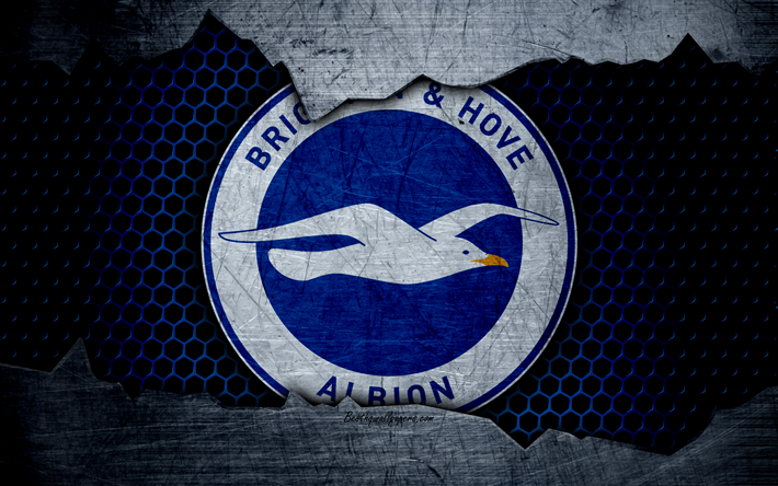 Download Wallpapers Brighton And Hove Albion FC, 4k