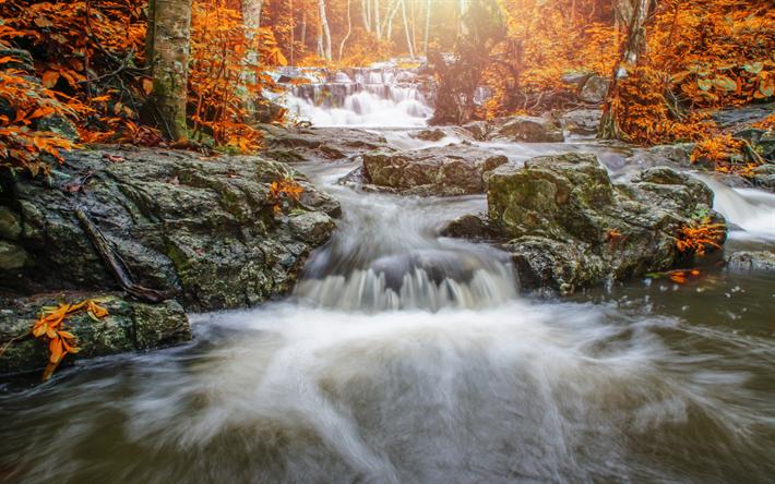foto de Télécharger fonds d'écran paysage d'automne cascade