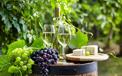 white wine, grapes, wooden barrel, autumn, French cheese