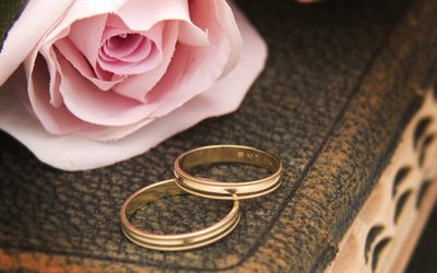 wedding rings, 4k, pink rose, book, wedding concepts