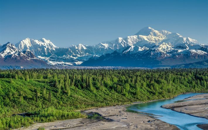 Mountain Landscape Forest River Summer Alaska Range Denali National Park