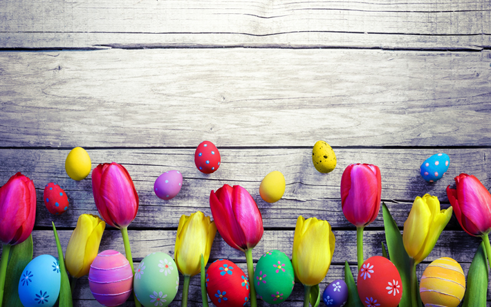 Tulips wallpapers free download