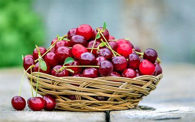 cherry, berries, basket with cherries, red berries, fruits, summer