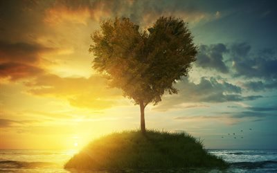 Tree heart, sunset, 3d landscape, 3d tree, island
