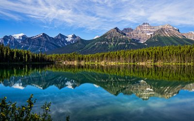 4k, banff national park, sommer, wald, berge, see, kanadische rocky mountains, schöne natur, kanada, mountains, nordamerika