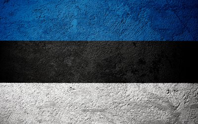 Flag of Estonia, concrete texture, stone background, Estonia flag, Europe, Estonia, flags on stone