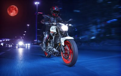 Yamaha MT-03, night, 2019 bikes, moon, biker on motorcycles, 2019 Yamaha MT-03, japanese motorcycles, Yamaha