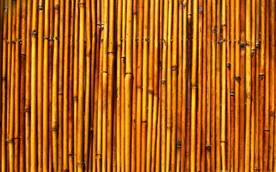 brown bamboo texture, bambusoideae sticks, macro, vertical bamboo texture, bamboo textures, bamboo canes, bamboo sticks, brown wooden background, bamboo