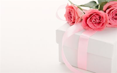 pink roses, gift box with pink silk bow, roses, beautiful bouquet, gift on a white background
