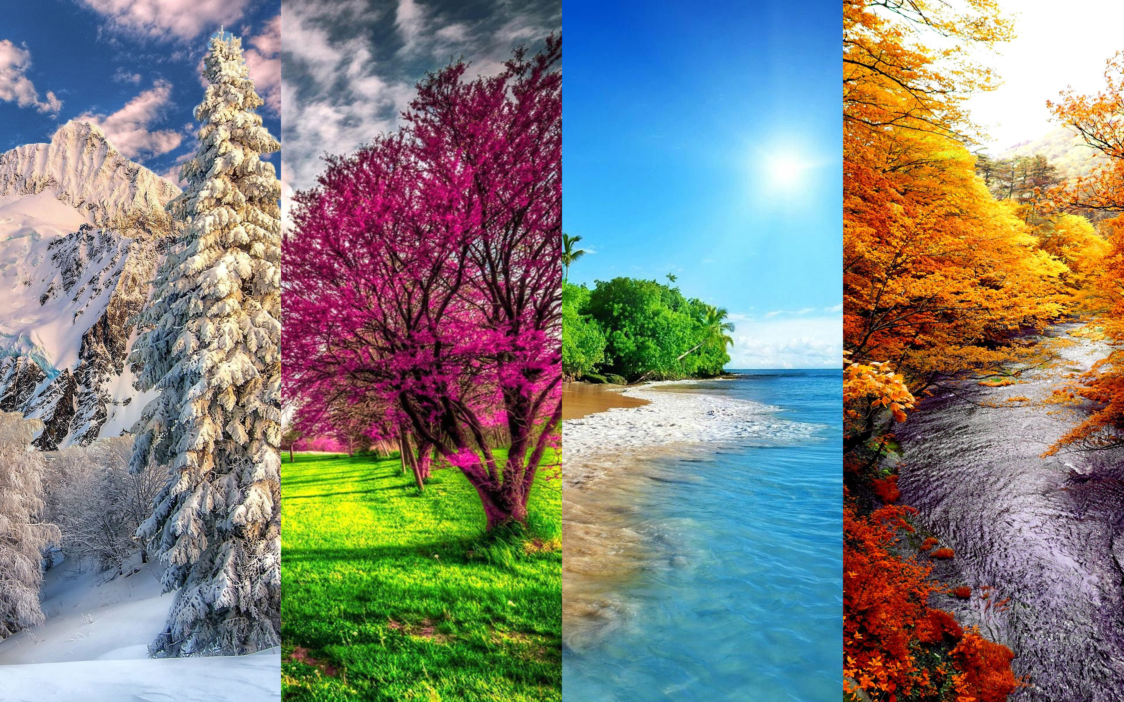 4k Spring Wallpapers High Quality: Download Wallpapers 4 Seasons, 4K, Winter, Spring, Summer