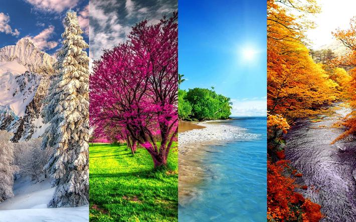 Download Wallpapers 4 Seasons 4k Winter Spring Summer