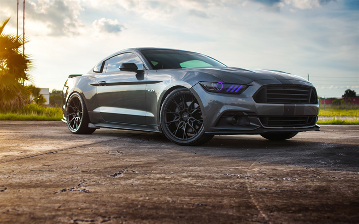 Niche Wheels Mustang >> Download Wallpapers Ford Mustang 2017 Gray Sports Coupe